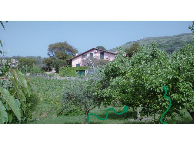 Grosszuegiges Landhaus , Weinberg, Bosa, Sardinien, Italien