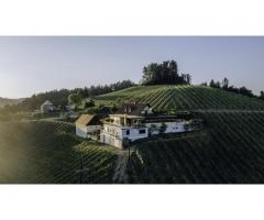 Weingut Südsteiermark
